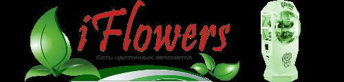 iFlowers - сеть цветочных автоматов